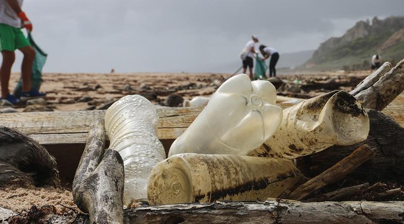 śmieci na plaży